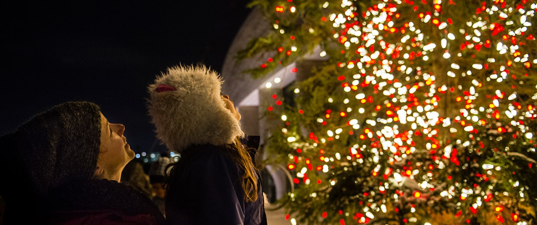 Lampki choinkowe, oraz inne ozdoby świąteczne.